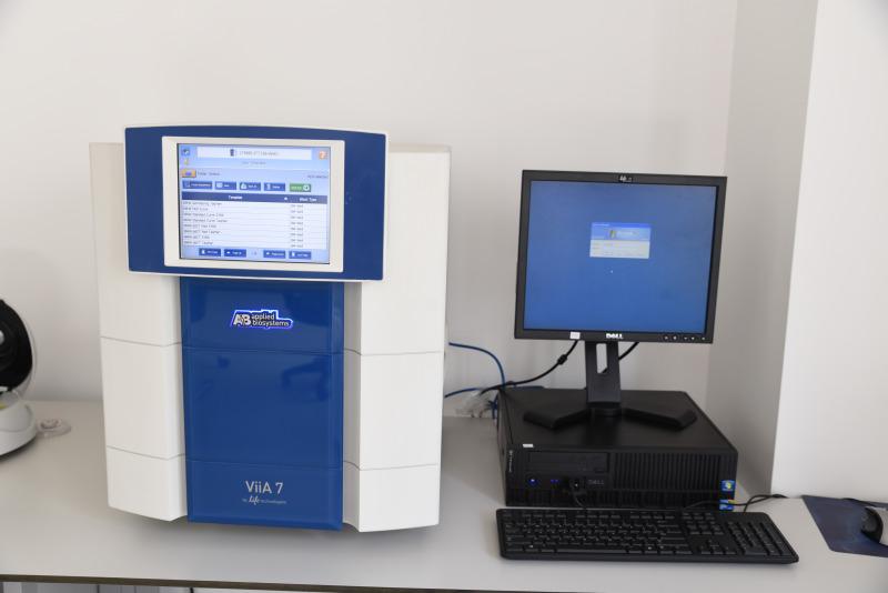 Gerçek Zamanlı PCR Cihazı